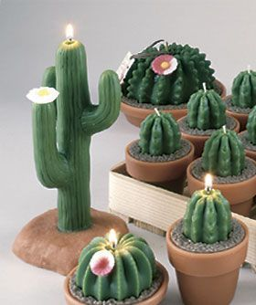 Cactus Shaped Candles
