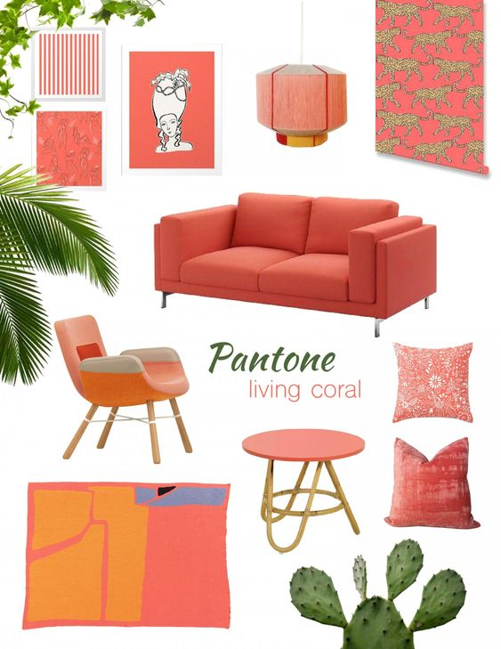 Coral Color Paint In The Livin Room 2