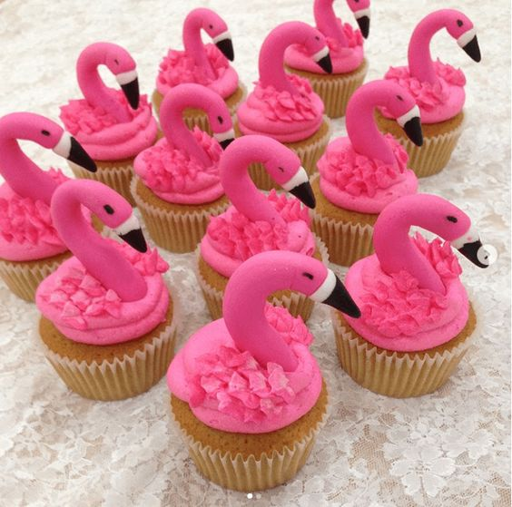 Cupcakes and Flamingos Biscuit