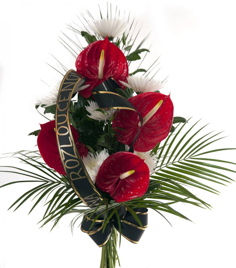 Flower For Funeral Anthurium Types