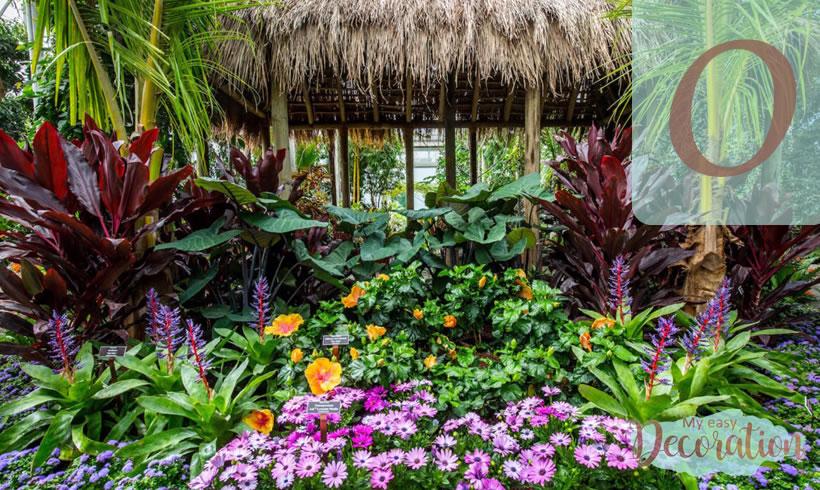 Hawaiian Flowers Starting With O