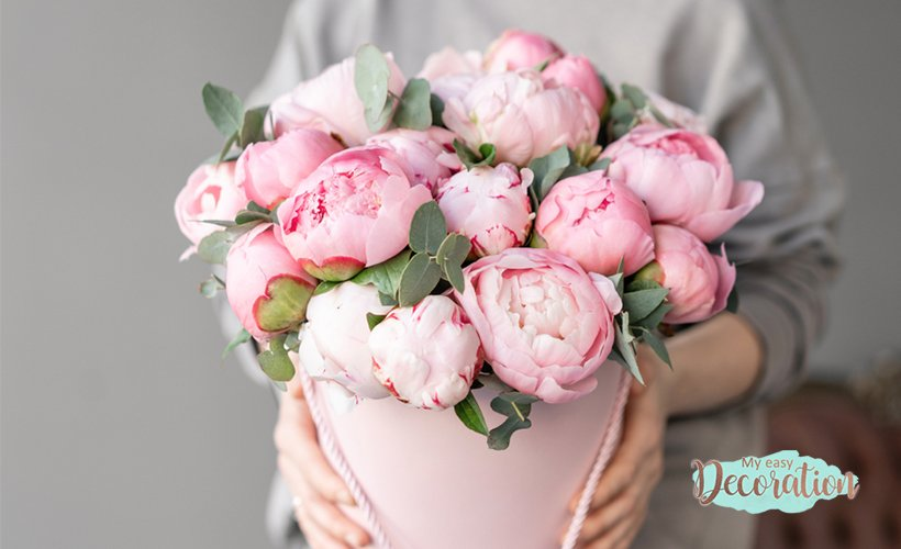 Peony Is The Favorite Flower For Bouquet And Home Decoration