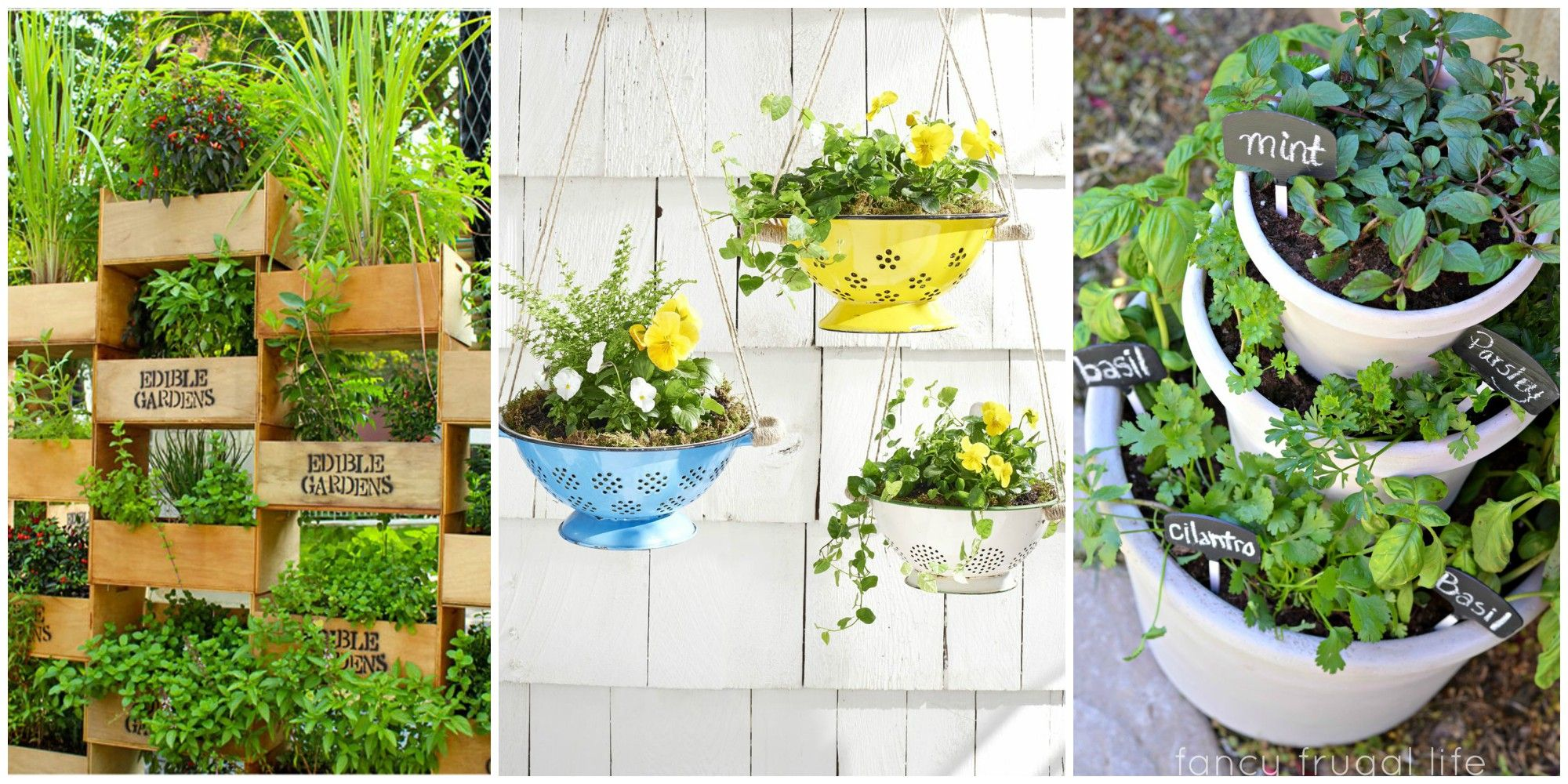 Small Garden Landscaping with Potting