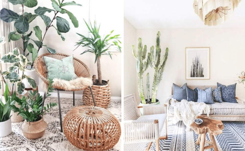 Living Room Ideas Decor With Flowers And Foliage