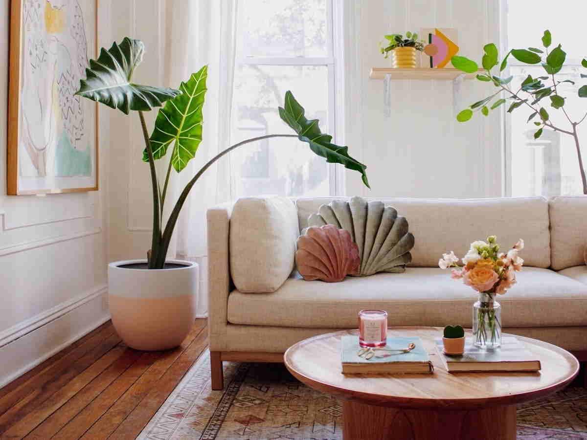 Living Room Ideas With Sofa Materials & Finishes