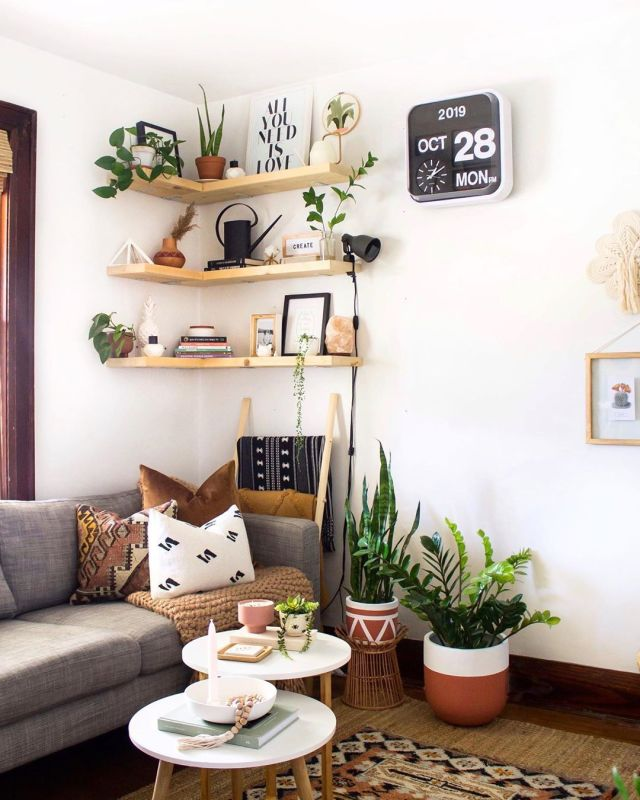 Small Living Room Ideas With Plants