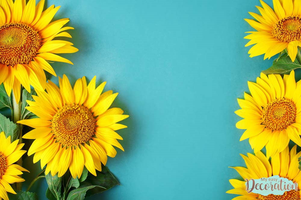 pictures-of-flowers-sunflower