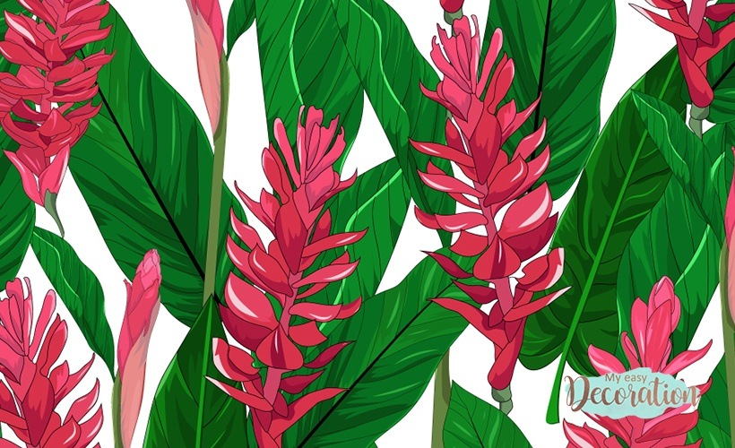 Paintings of Red Ginger Flowers