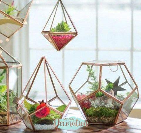 succulents-terrarium-trends