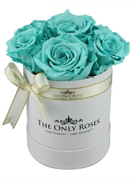 What Are The Meanings Of Tiffany Blue Roses?
