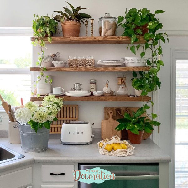 Types Of Plants For Green Walls In Kitchen