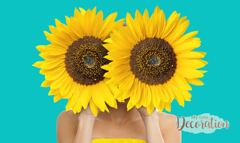 Sunflower is tacky? Find out why the flower became a fever in 2021! ✨🌻
